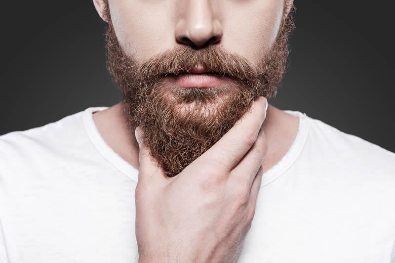 barbe douce sèche